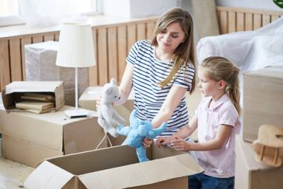 DuPage County parental relocation lawyer
